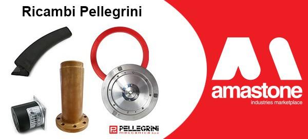 Ricambi Pellegrini